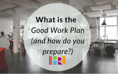 What is the Good Work Plan (and what do you need to do to prepare?)
