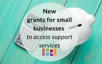 New small business grants for support services